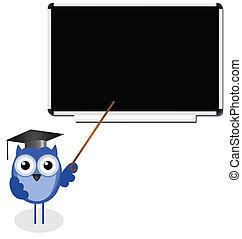 gufo, insegnante