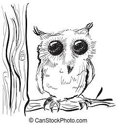 gufo, schizzo, albero, illustrazione, mano, disegnato