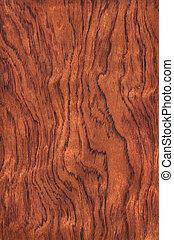 Guibourtia (wood texture) - Texture of guibourtia...