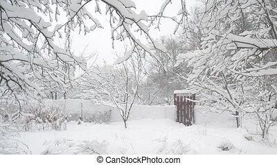 guichet, fond, tomber, arbres, neige, campagne