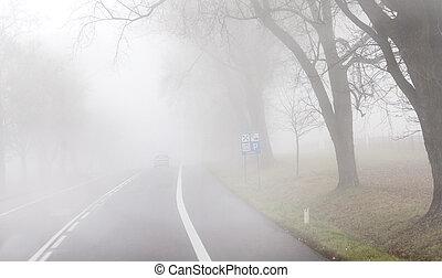 guida, il, nebbia, strada
