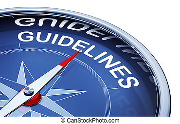 guidelines - 3D rendering of an compass with the word...