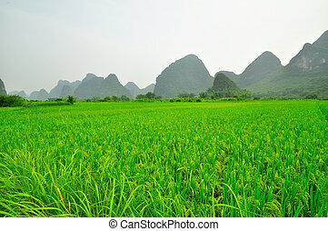Guilin Li river Karst mountain landscape in Yangshuo -...