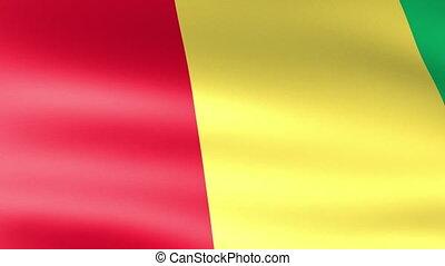 Guinea Flag Waving
