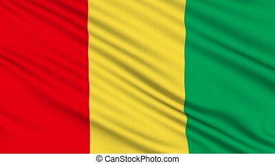 Guinea Flag, with real structure of a fabric