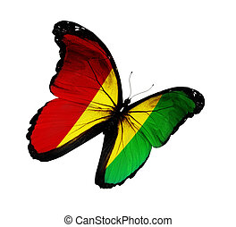 Guinean flag butterfly flying, isolated on white background