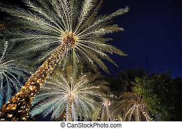 guirlande, bomen, palm nacht, verfraaide, kerstmis