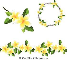guirnalda,  frangipani, Florecer, árbol, rama, patrón, cepillo, redondo, Interminable