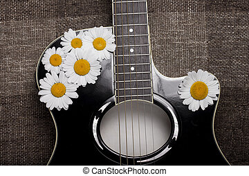 Guitar And Daisy Flowers