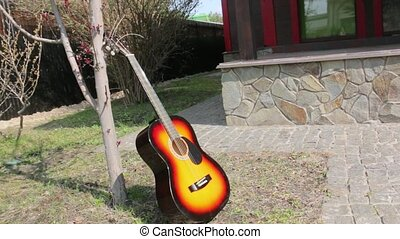 Guitar and tree musical instrument outdoors nature