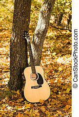 Guitar in autumn leaves
