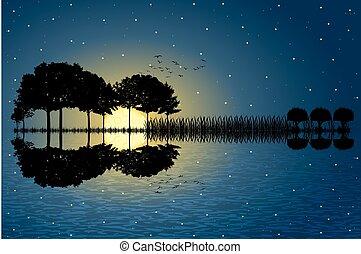 guitare, île, clair lune