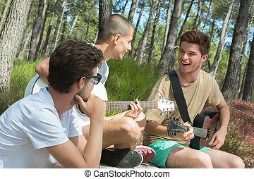 guitare, sourire, groupe, jouer, touristes