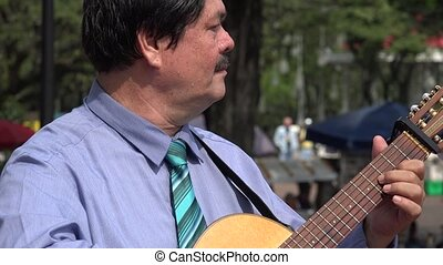 Guitarist at Park with Pigeons