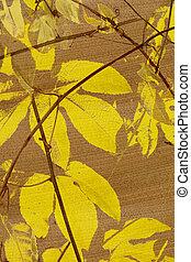 gul, passionsfrukt, det leafs, tryck, på, kokosnöt, papper, strukturerad, bakgrund