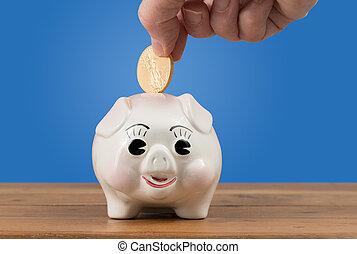 guld møntet, er, indsaæt, into, piggy bank