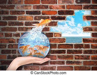 guldfisk, hoppning, för, frihet, tillfälle