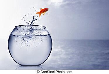 guldfisk, hoppning, in i, den, hav