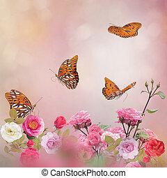 Gulf Fritillary butterflies in a rose garden