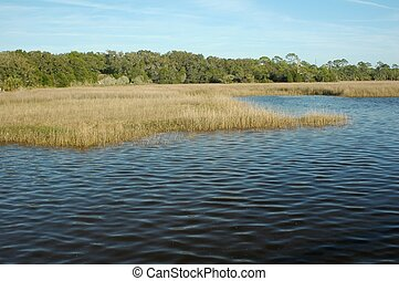 Gulf Grass Flats 1 - The grass flats near Shell Mound...