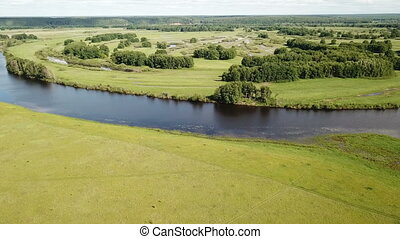 gulf meadows in the floodplain of the Oka River, Russia. High quality FullHD footage