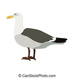 Gull Flat Design Vector Illustration
