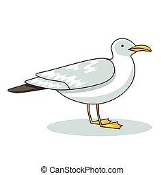 Gull flight bird and seabird gull. ?artoon looking gull. Sea...