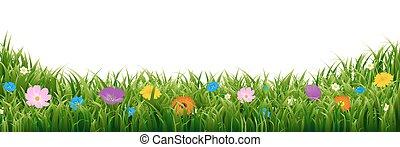gumboot, 由于, 綠色的草, 以及, 鬱金香