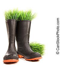 gummi støvle, hos, græs, på hvide
