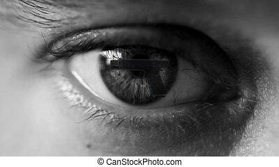 Gun control - Gun in the eye of a man