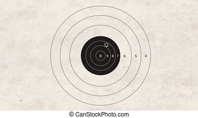 shooting target - gun shoot to the shooting target concept