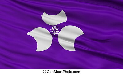 Gunma Prefecture Close Up Flag