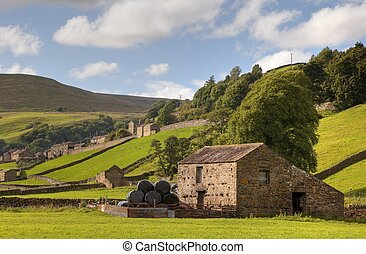 Field barns at Gunnerside, Swaledale, Yorkshire Dales National Park, England.