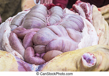 Chitterlings raw - Guts inside a cut pig. Chitterlings raw