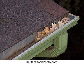 gutter blocked by dry leaves - house maintenance problem -...