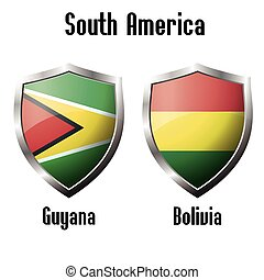 Guyana and Bolivia flag icons theme