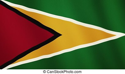 Guyana flag waving animation. Full Screen. Symbol of the country.