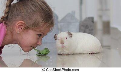 gwinea, liście, pietruszka, lekko, dziewczyna, biały,...