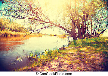 gyönyörű, ősz, river., színhely, táj