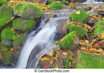 gyönyörű, ősz, vízesés, erdő