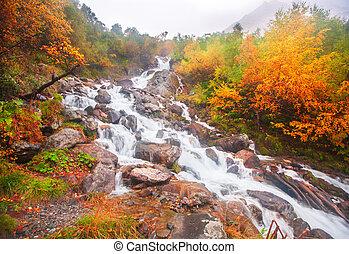 gyönyörű, ősz, vízesés, erdő, vízesés