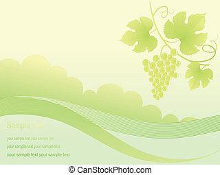 gyönyörű, arany-, szőlő, háttér.