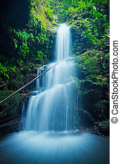 gyönyörű, buja, vízesés, alatt, hawaii