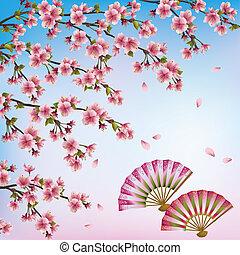 gyönyörű, dekoratív, fa, kivirul, cseresznye, -, japán, ábra, két, vektor, sakura, háttér, fans., nyílik