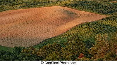 gyönyörű, dombos, táj, mező, -, tető kilátás