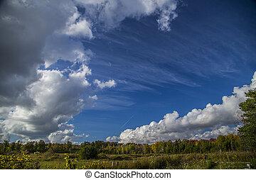 gyönyörű, elhomályosul, alatt, kék ég, nap