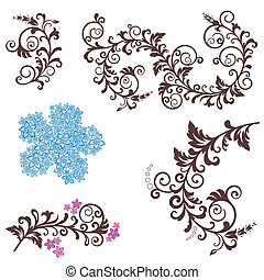 gyönyörű, floral elem, tervezés