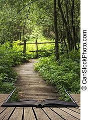 gyönyörű, fogalom, fából való, eredet, kép, angol, buja, vidéki táj, sétány, könyv, át, erdő, érkező, zöld, nyílik, apródok, táj, ki