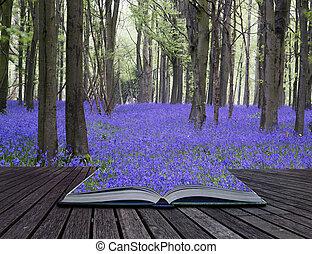 gyönyörű, fogalom, harangvirág, eredet, kreatív, könyv, erdő, menstruáció, apródok, táj, szőnyeg