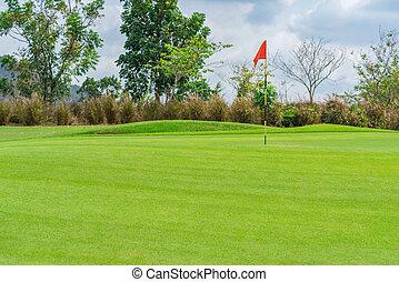 gyönyörű, golfcourse, bíróság, bitófák, zöld, golf, fű, táj
